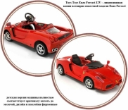 Электромобиль TOYS TOYS Ferrari Enzo, 676204