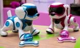 Интерактивный робот-щенок бел/голуб TEKSTA